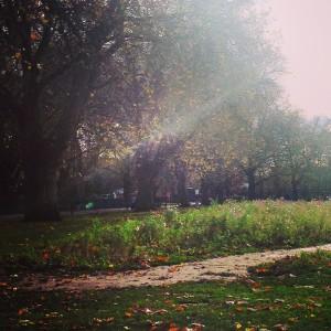 autumn by Sarah Blinco